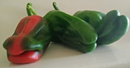 chili padron