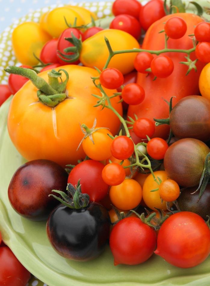 Tomatfat
