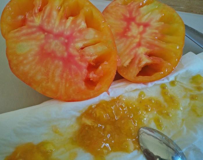 ananas frö