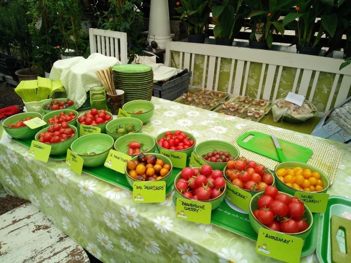 små-tomaterna redo